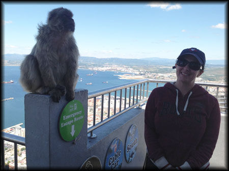 With a dignified representative of the Gibraltar Monkeys (or Barbary Macaques)